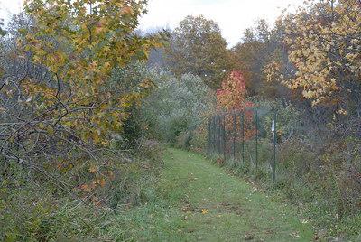 Oct 06 Walk 06