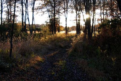 Oct 06 Walk 27