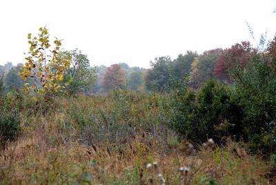 WTR October 2007 27