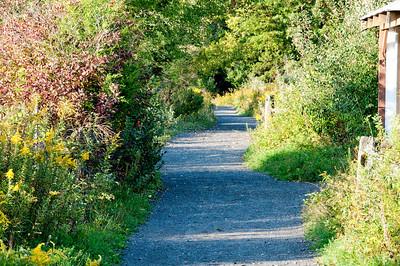 Sept 2009 Walk 21