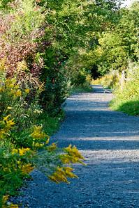 Sept 2009 Walk 22