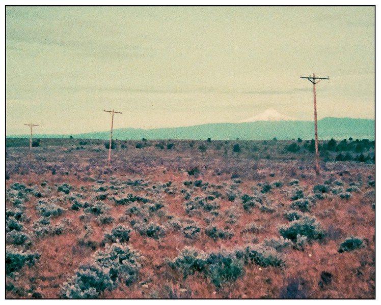 Pentax Auto 110 - Lomochrome Purple. Criterion Ranch April 2020