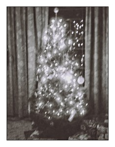 Christmas 2020 in Orca B&W 110