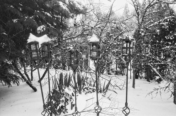 2021/02/14 Analog Snowpocalypse   Olympus 35RC    Kosmo Mono 100