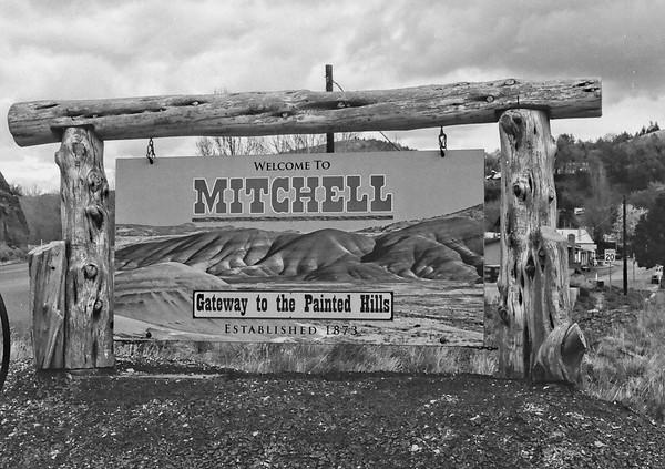 Mitchell | Olympus Pen FT | Derev Pan 200 | 2021/04/26