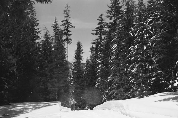 Lost Lake 2020/03/08. Pentax Super, Konica Monochrome VX400 Film, Expired 2004.