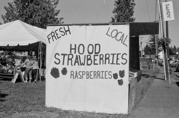Local Hoods.