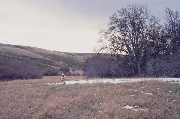 Crawford Oaks Hike - Canonet GIII - Fujichrome Provia 400F - 2021/02/21