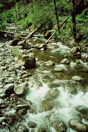 Eagle Creek 2021/07/05   Olympus XA   Svema Color 125