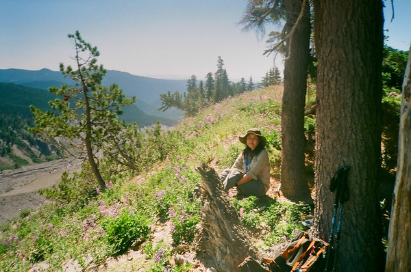 On Boy Scout Ridge, Mt. Hood. Olympus XA. Fujicolor Industrial.