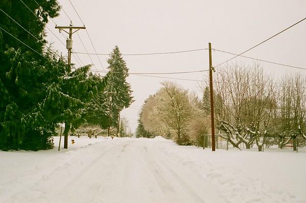 2021/02/14 Analog Snowpocalypse | Olympus Trip |  2009 Walgreens Studio 35
