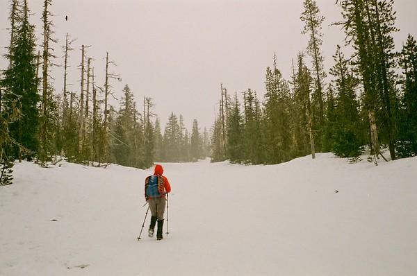 2021/01/24 Glade Alpine Loop | Olympus Trip |  2009 Walgreens Studio 35