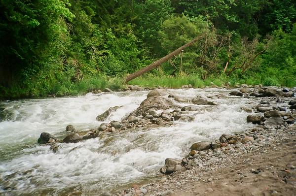 3 Short Hikes - I Punchbowl Falls Park