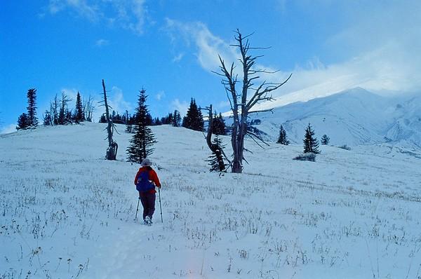 White River to Timberline Lodge | Olympus OM10 | Kodak Elite Chrome 100 |