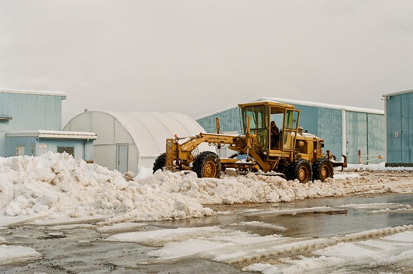 Work Life - After the Snow 2021/02/17 | Konica T3 | Kodak Pro Image 100