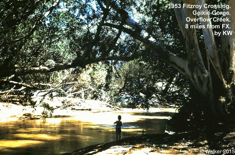 1953 Geikie Gorge overflow creek