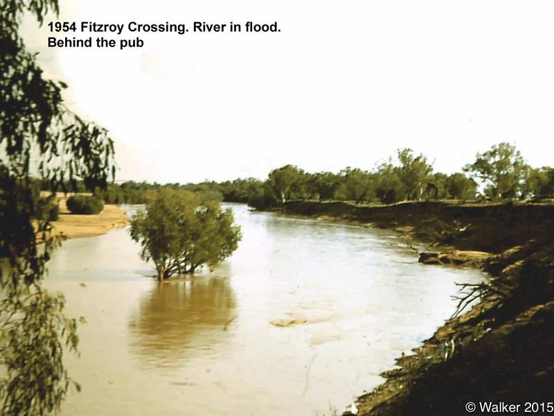 1954 Fitzroy Crossing. River in flood. Behind pub.jpg