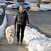 Sue Haverty  was out walking her dog Soloman, a great Pyrnesse, on Mt. Elam Road in Fitchburg next to Forest Hill Cemetery on Friday afternoon. The temperature had reached about 35 degrees. SENTINEL & ENTERPISE/JOHN LOVE
