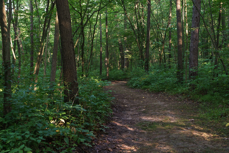 Trails at Baker Woods Preserve