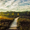Sunrise at Turtle Rock Pond