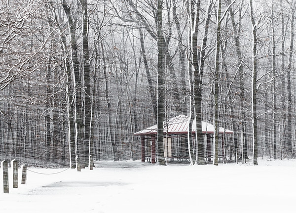 Waiting out the winter - Lillie Park