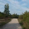 Path to Turtle Rock - Lillie Park