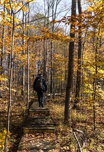 Hiker at the Nan Weston Preserve