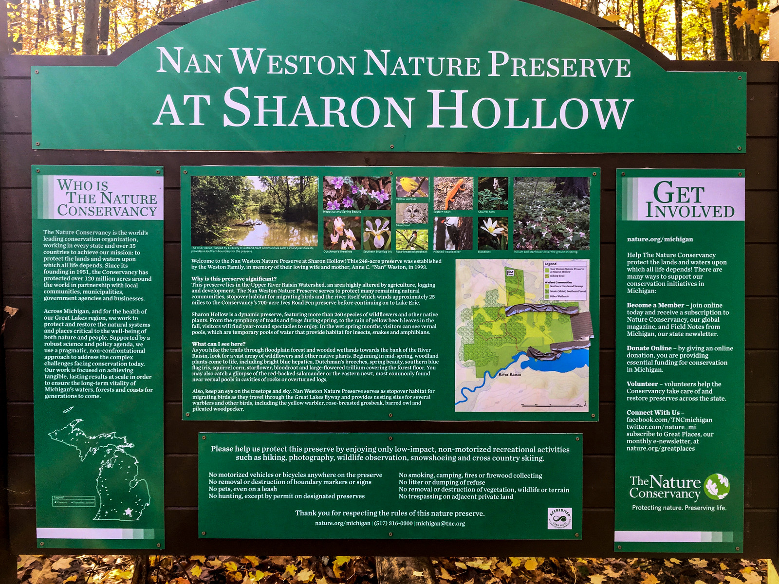 Welcome to the Nan Weston Nature Preserve