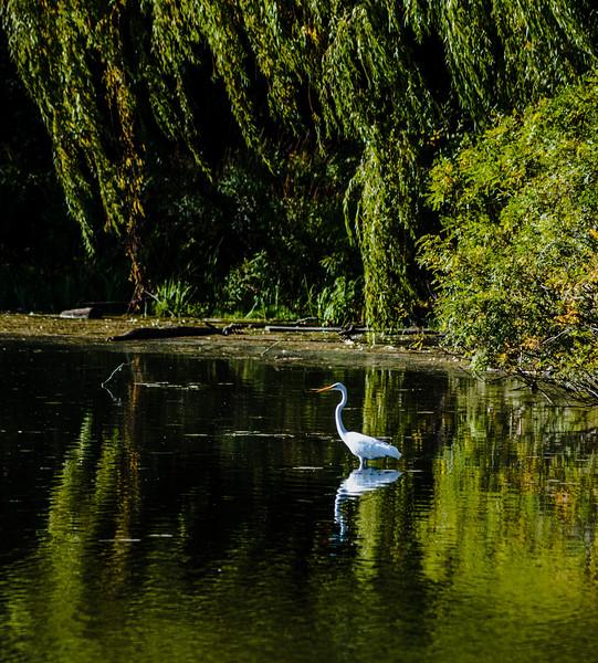 On the lagoon at North Bay Park