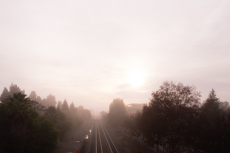 Foggy Morning Tracks