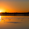 Baylands Winter Sunrise