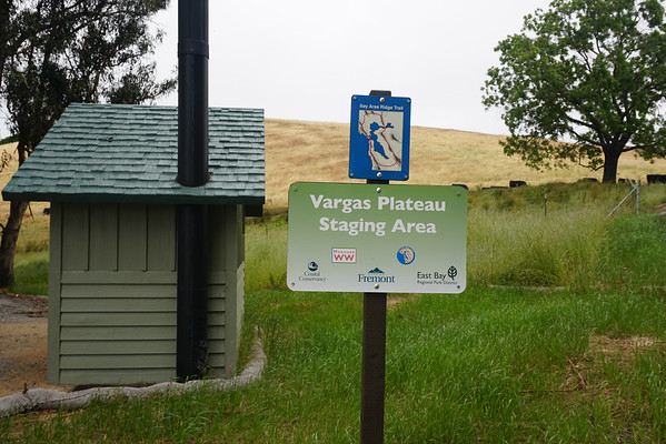 Vargas Plateau