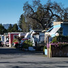 Buena Vista Trailer Park