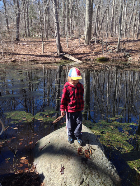 Vernal Pool Walk - April 2014