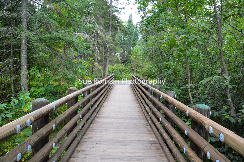 Wooden Bridge 4