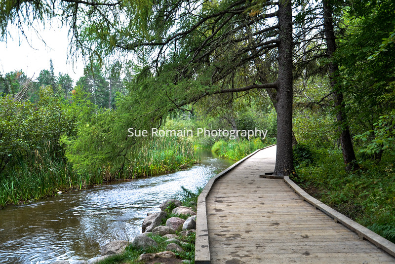 Boardwalk at Mississippi River Headwaters