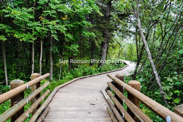 Wandering Walkway