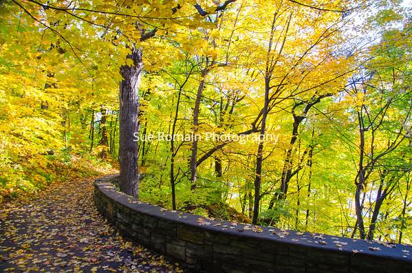 Winchell Trail, Minneapolis, MN