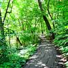 1-Winchell Trail