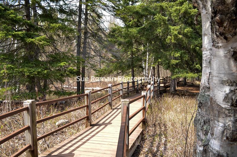 Walkway at Gooseberry Falls, Minnesota