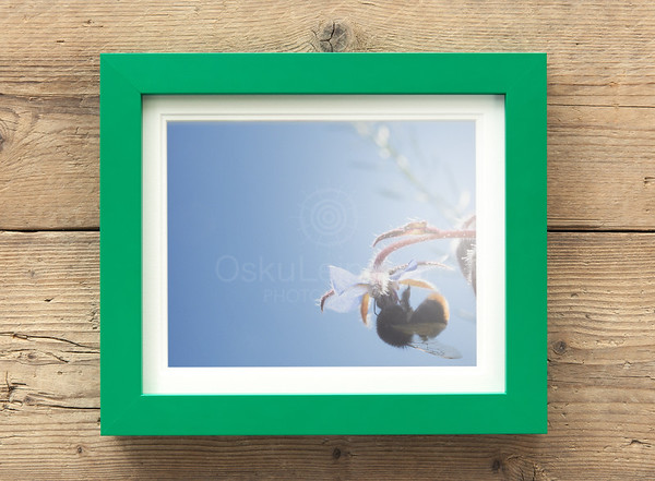 Canvas Prints Framed Aesthetic Images II