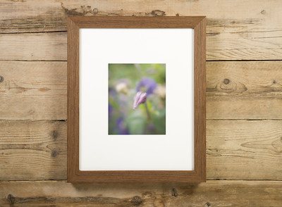 Canvas Prints Framed Aesthetic Images IV