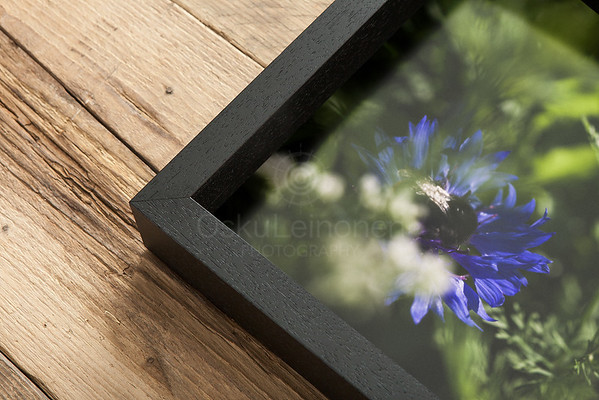 Canvas Prints Framed Aesthetic Images VIII