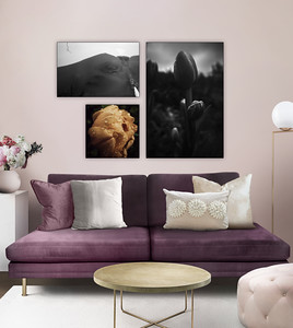 Canvas Prints Framed Aesthetic Images XI
