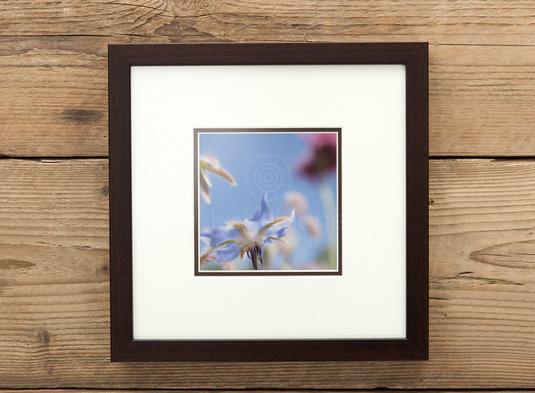 Canvas Prints Framed Aesthetic Images I