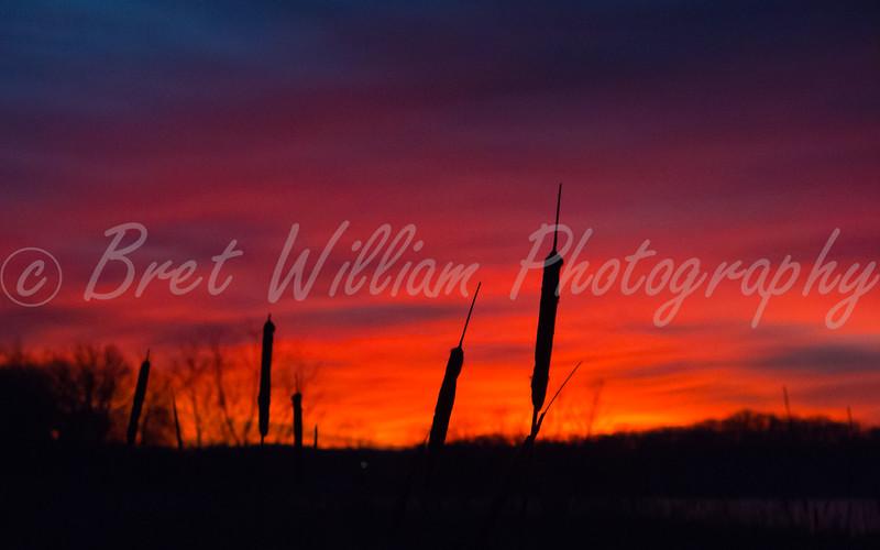 IMG_9859_EP Sunrise 2015