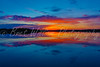 BWP41666_Sunrise 2016
