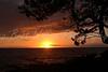 Hawaiian Sunset DSCN0289