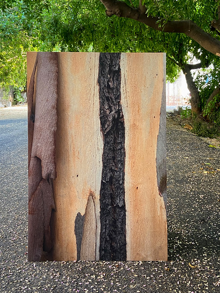 Wood Abstracts - 4