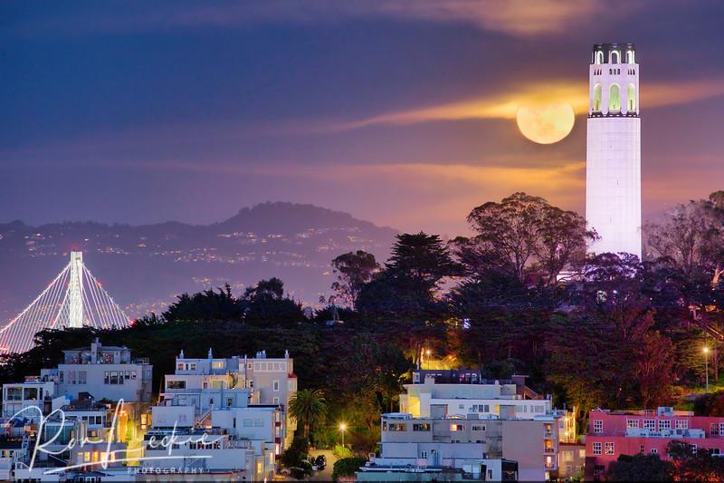 Supermoon rises over Telegraph Hill, San Francisco